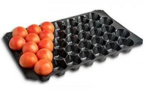 alveolos para fruta esfericos