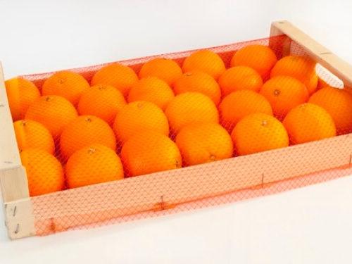 cubre malla para cajas de fruta
